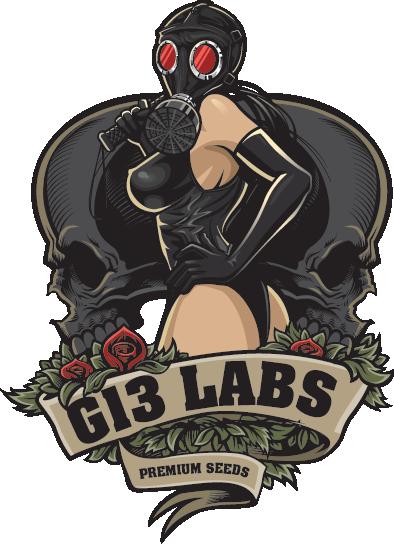 G13 Labs Lady Logo